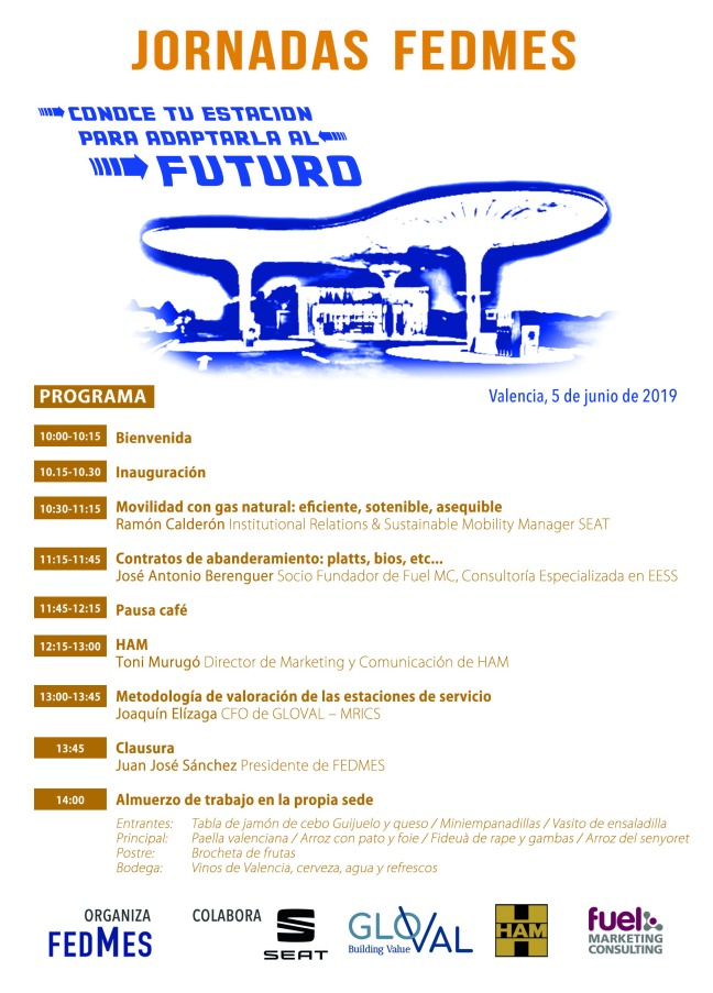 Jornadas FEDMES Junio 2019